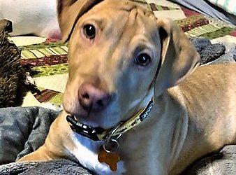 Meet Spencer